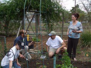 judes-garden2