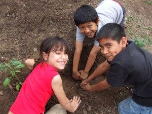 school-gardeners